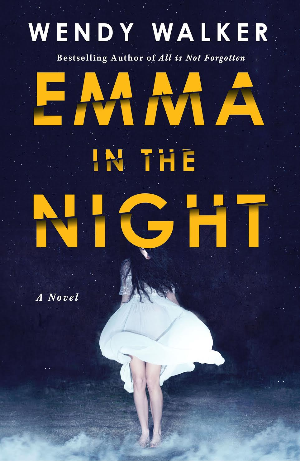 Review: Emma In The Night – Wendy Walker